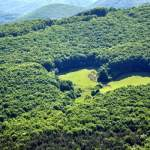 In Alba County, a glade takes the shape of a heart