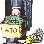 The AER calls for increased transparency in WTO negociations and for Parliamentary vote on GATS