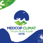 COP22: the final countdown