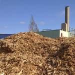 BIOTEAM Magazine on bioenergy and sustainability