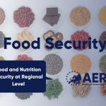 Developing sustainable and inclusive food systems at regional level
