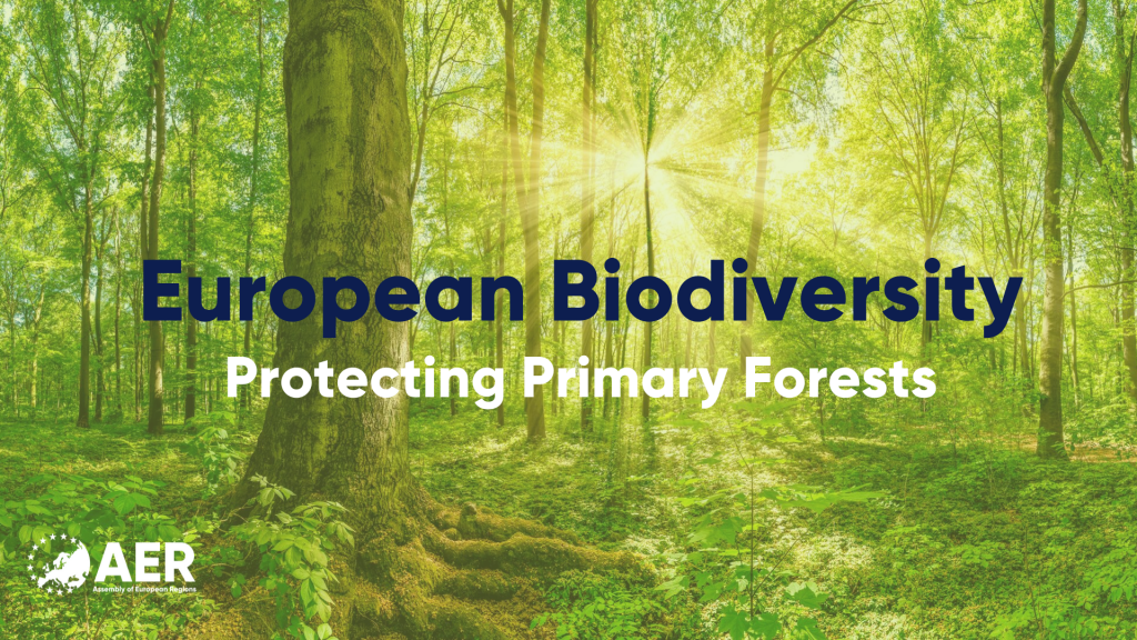 European Biodiversity: Protecting Primary Forests
