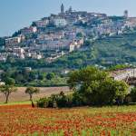Are you developing a project in the tourism sector? Umbria is keen to join!